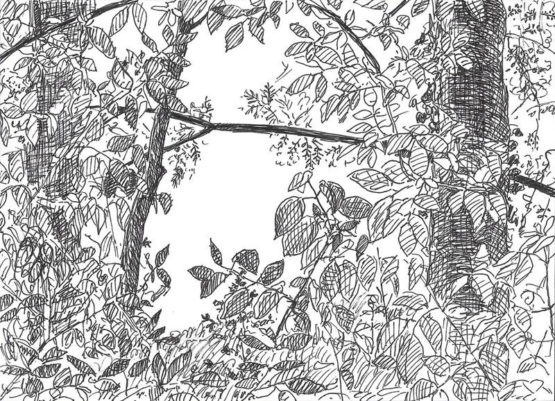 Telpost nr. 5, Doorkijkje in de Halve Bunder, 2017, 14,5x10,5 cm, fineliner op papier - Verkocht