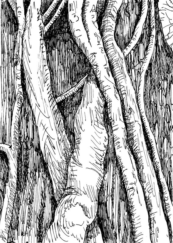 Klimop-2, 2017, 10,5x14,3 cm, oost-indische ink op papier