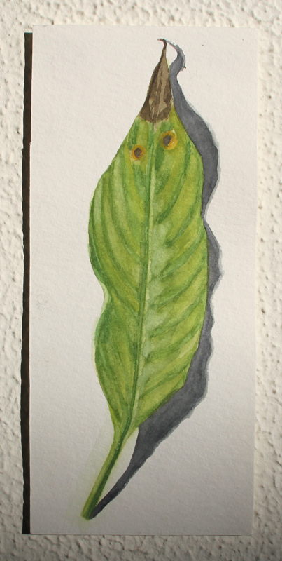 Natuurportret #1, 2021, 8,4x19 cm,  aquarel op papier